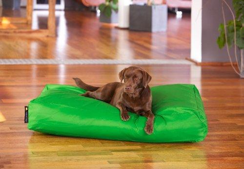 Hundebett Classic XXL Farbe: Grün