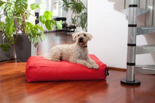 Hundebett Classic Farbe: Rot